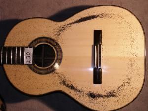 Guitar resonating at 220Hz
