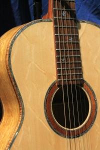 guitarbearclawtop